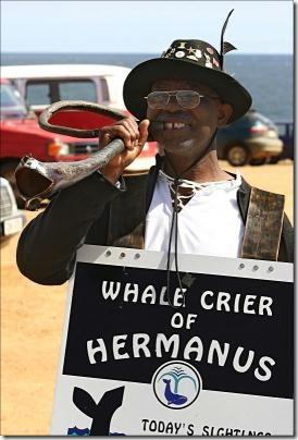 whale_crier